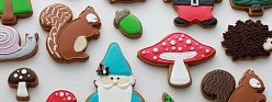 Woodland Decorated Cookies