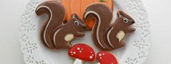{Video} How to Decorate Squirrel or Chipmunk Cookies