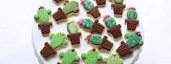 (Video) How to Decorate Cactus Cookies