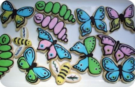 butterflies-caterpillars-bees-450x291