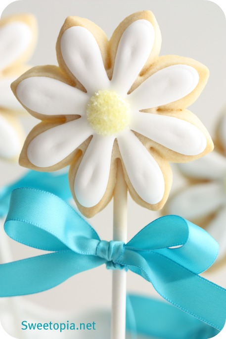 daisy-cookie-pop