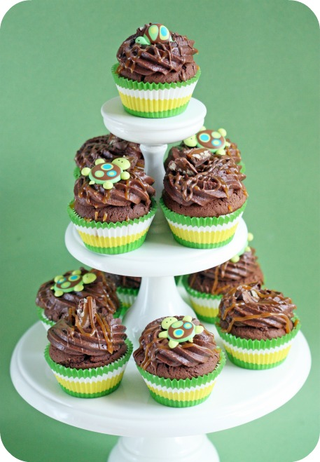 Turtle cupcakes