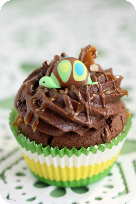 turtle-on-a-cupcake