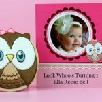 1sr Birthday Owl Cookies