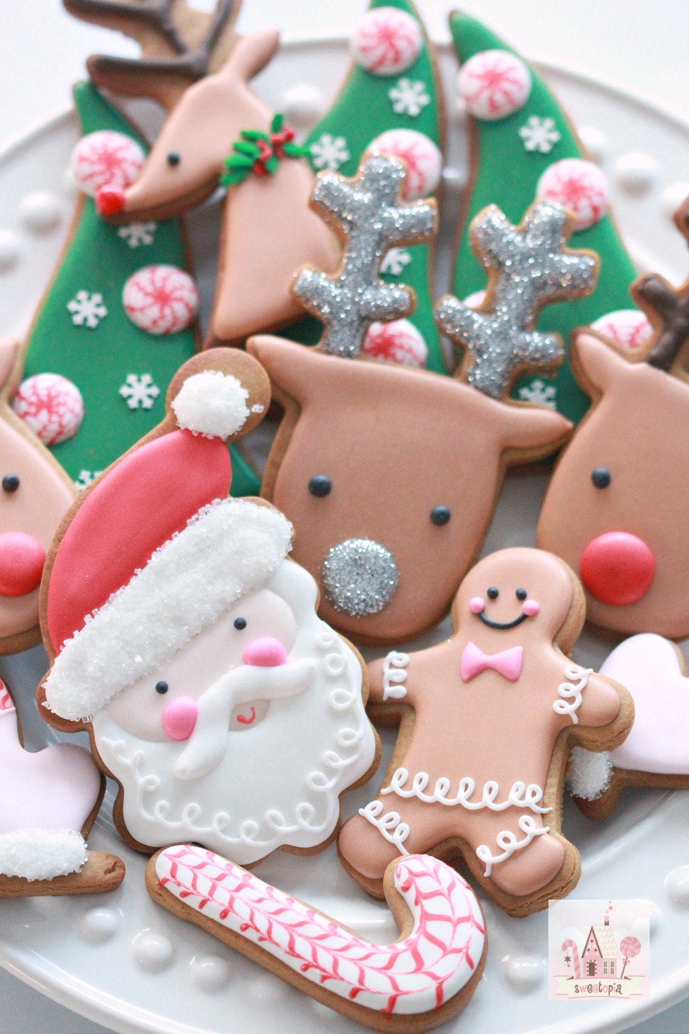 video tutorial how to decorate simple christmas cookies