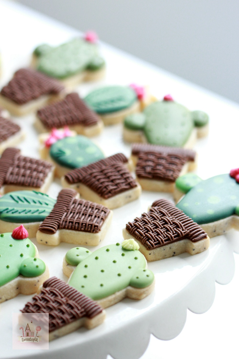 Cactus Decorated Cookies