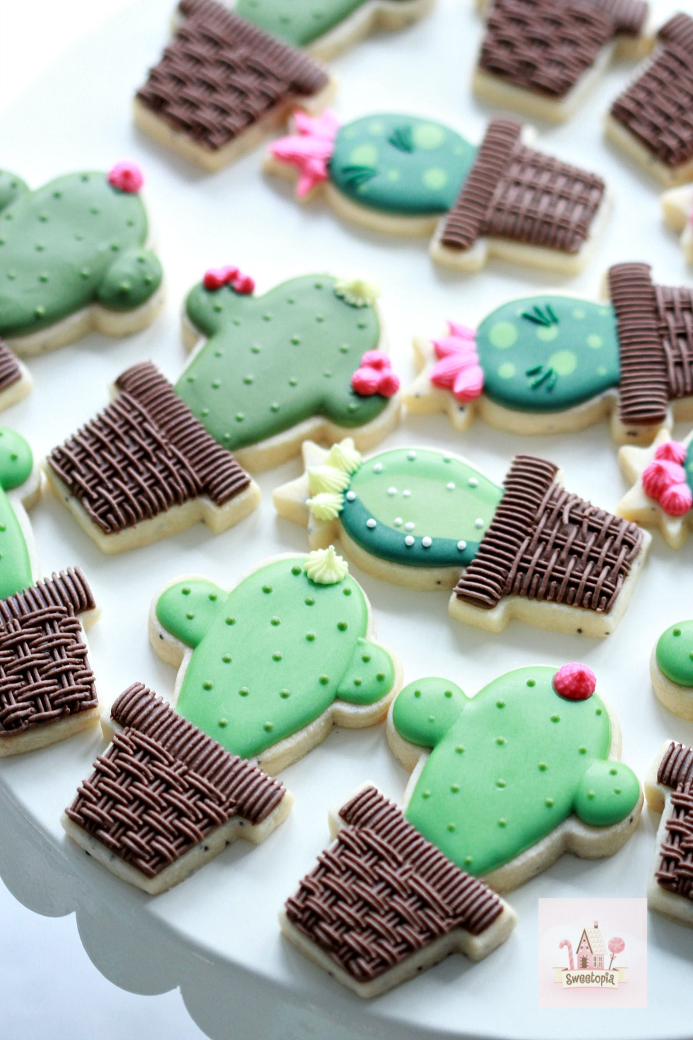 How to Decorate Cactus Cookies Video