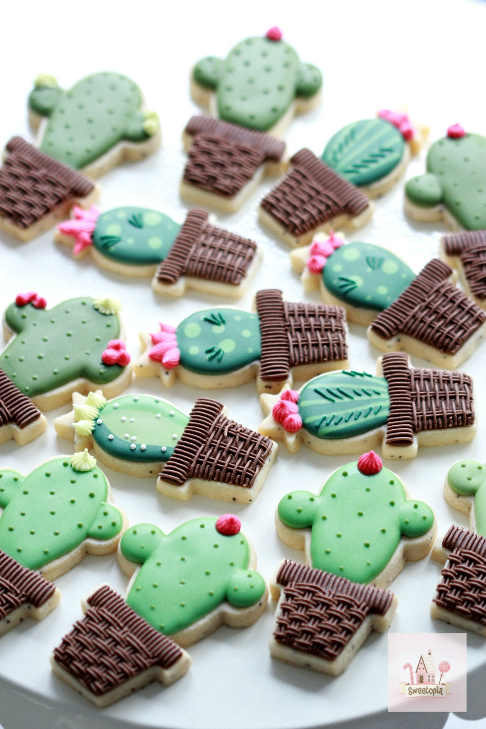 Video How to Decorate Cactus Cookies with Royal Icing