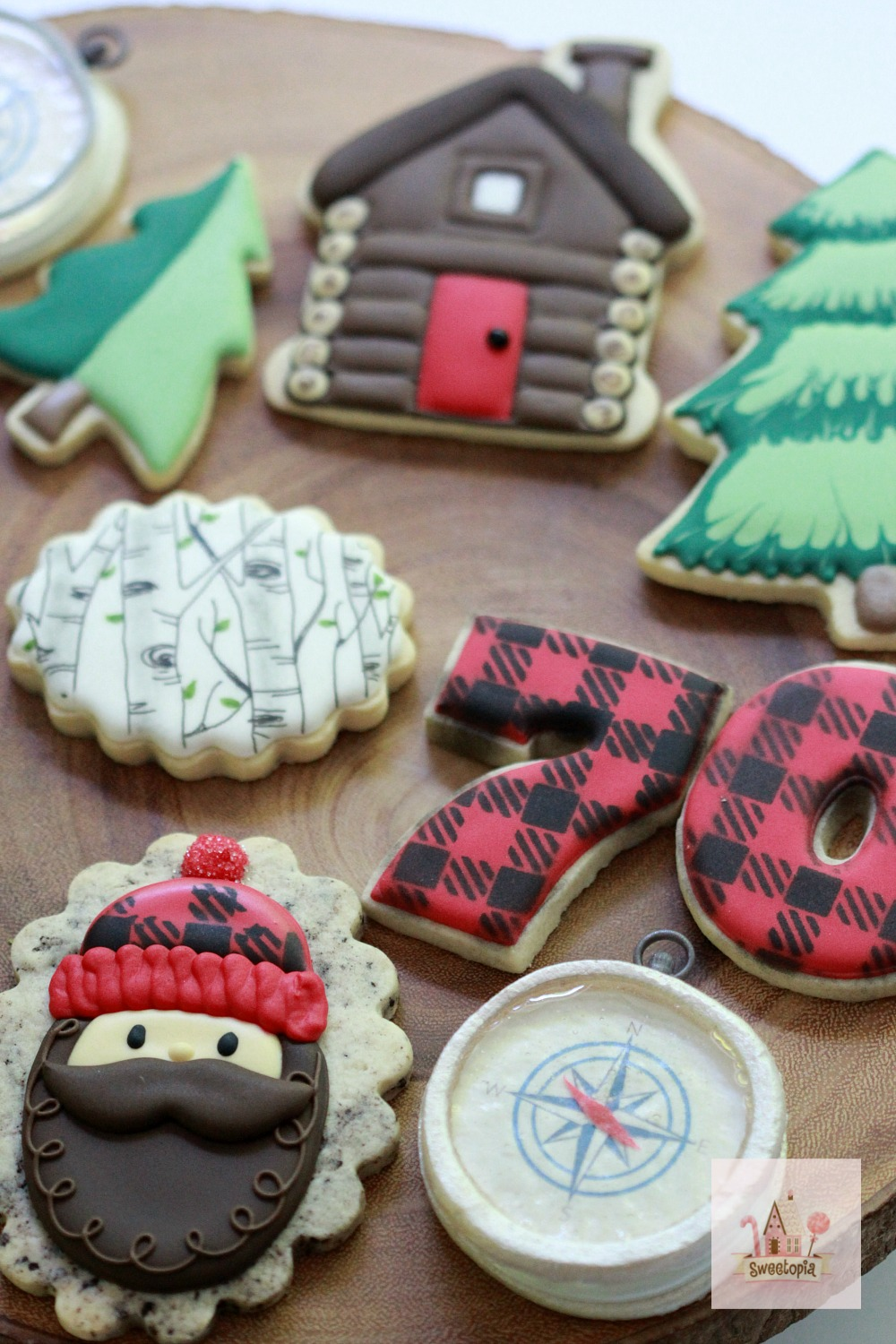 How to Decorate Camping Cookies with Royal Icing Video Tutorial Sweetopia